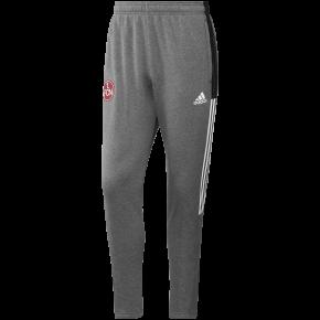adidas FCN Jogginghose 21/22 grau