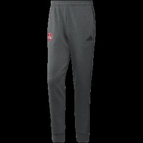 adidas Jogginghose Lifestyle 21/22 grau